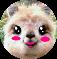 Sugar Llama King